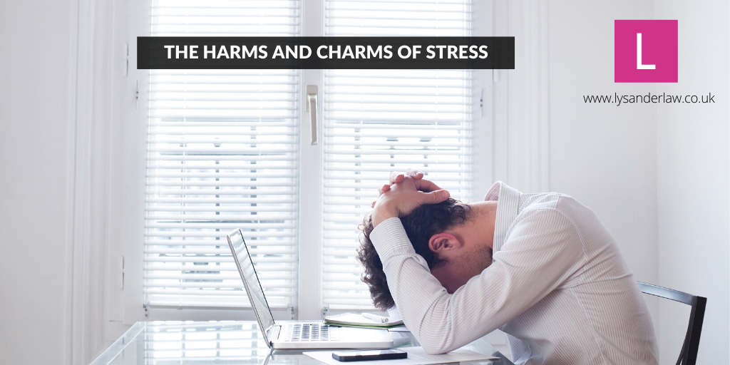The Harms and Charms of Stress